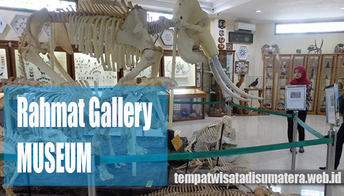 Wisata Pintar Rahmatsyah International Wildlife Museum